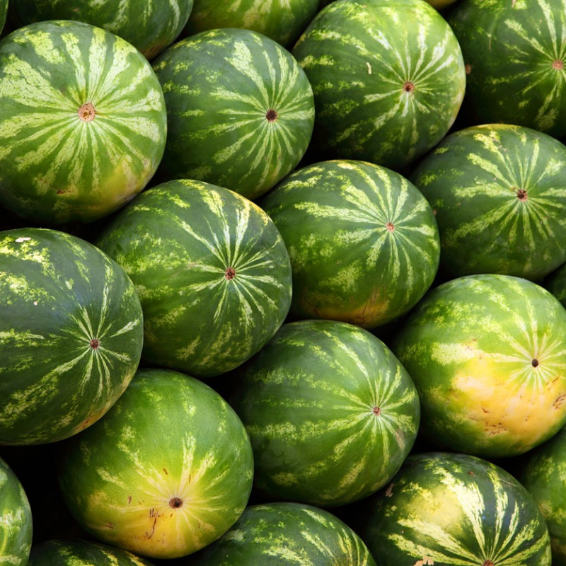 Melons -
