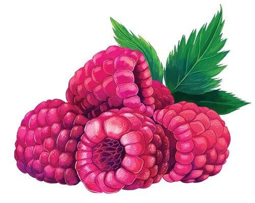 Taste_raspberry.jpg