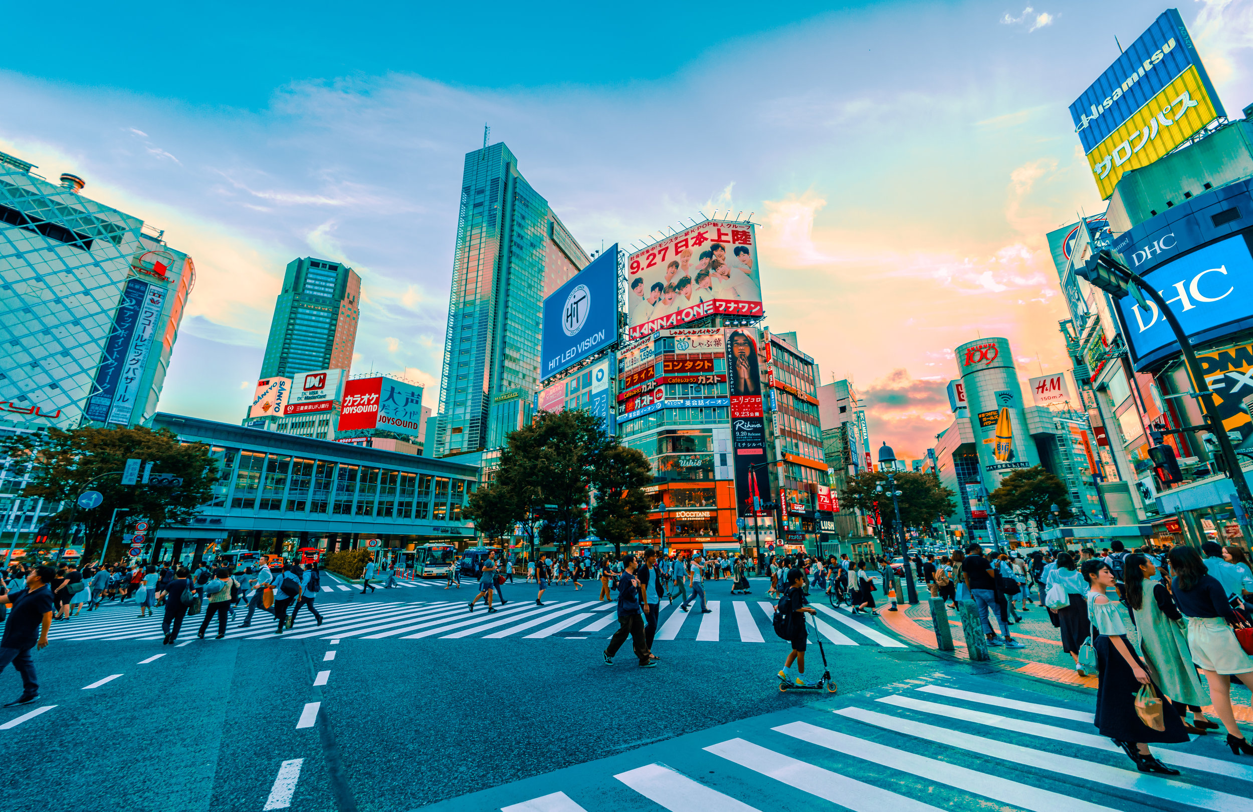 Country Head - We partnered with the global executive of a multinational ad agency to place their lead health advertising executive in Japan.
