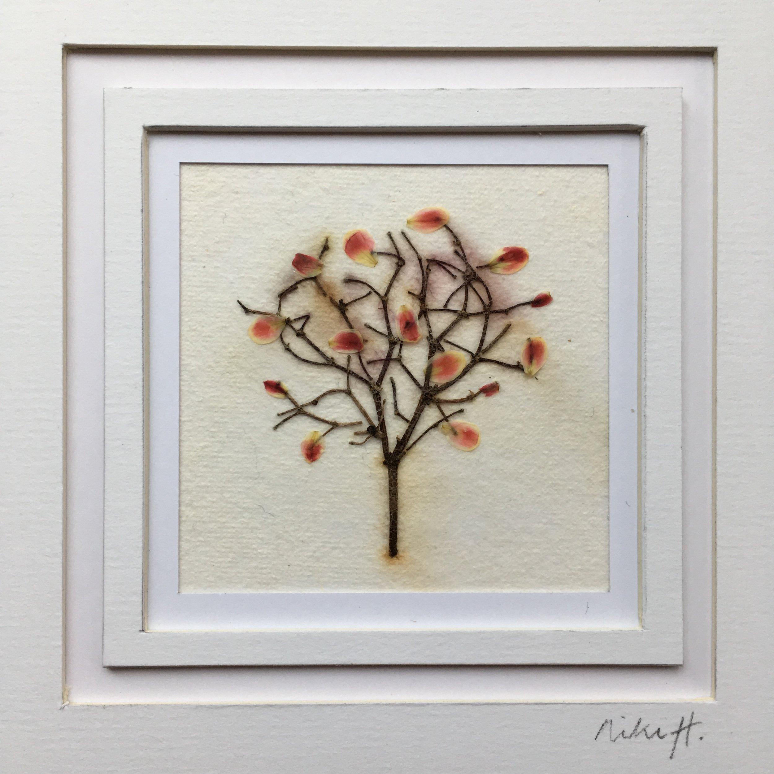 miniature tree picture.jpg