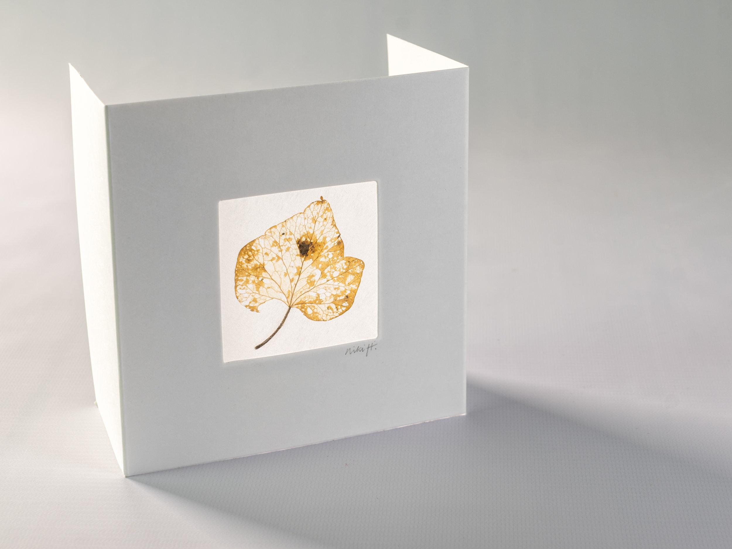 ivy leaf window card.jpg
