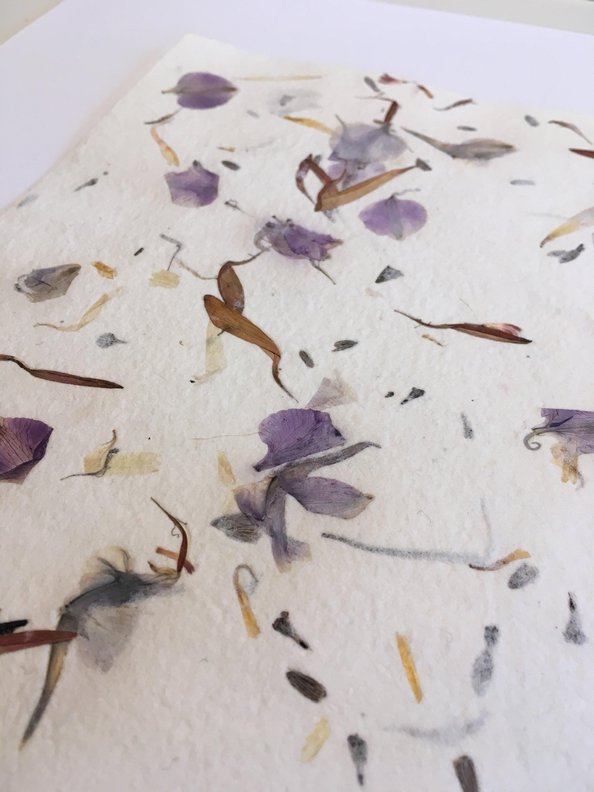 petal paper.JPG