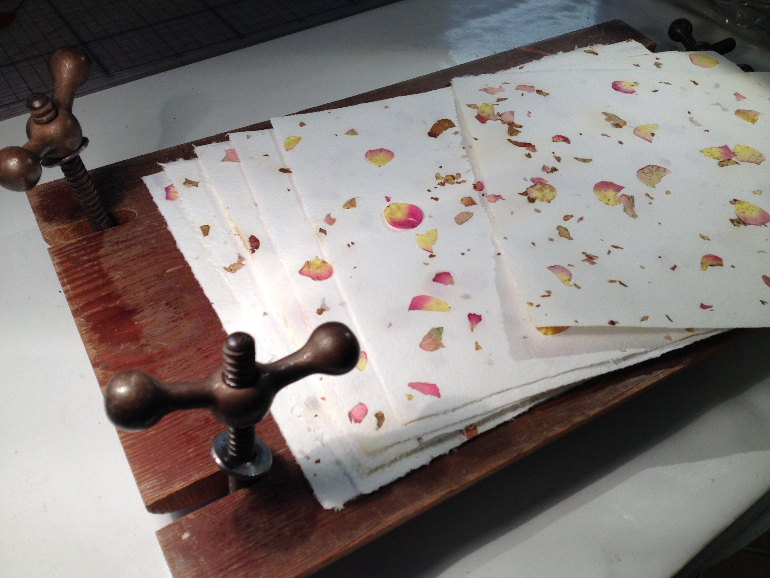 rose petal papers.JPG