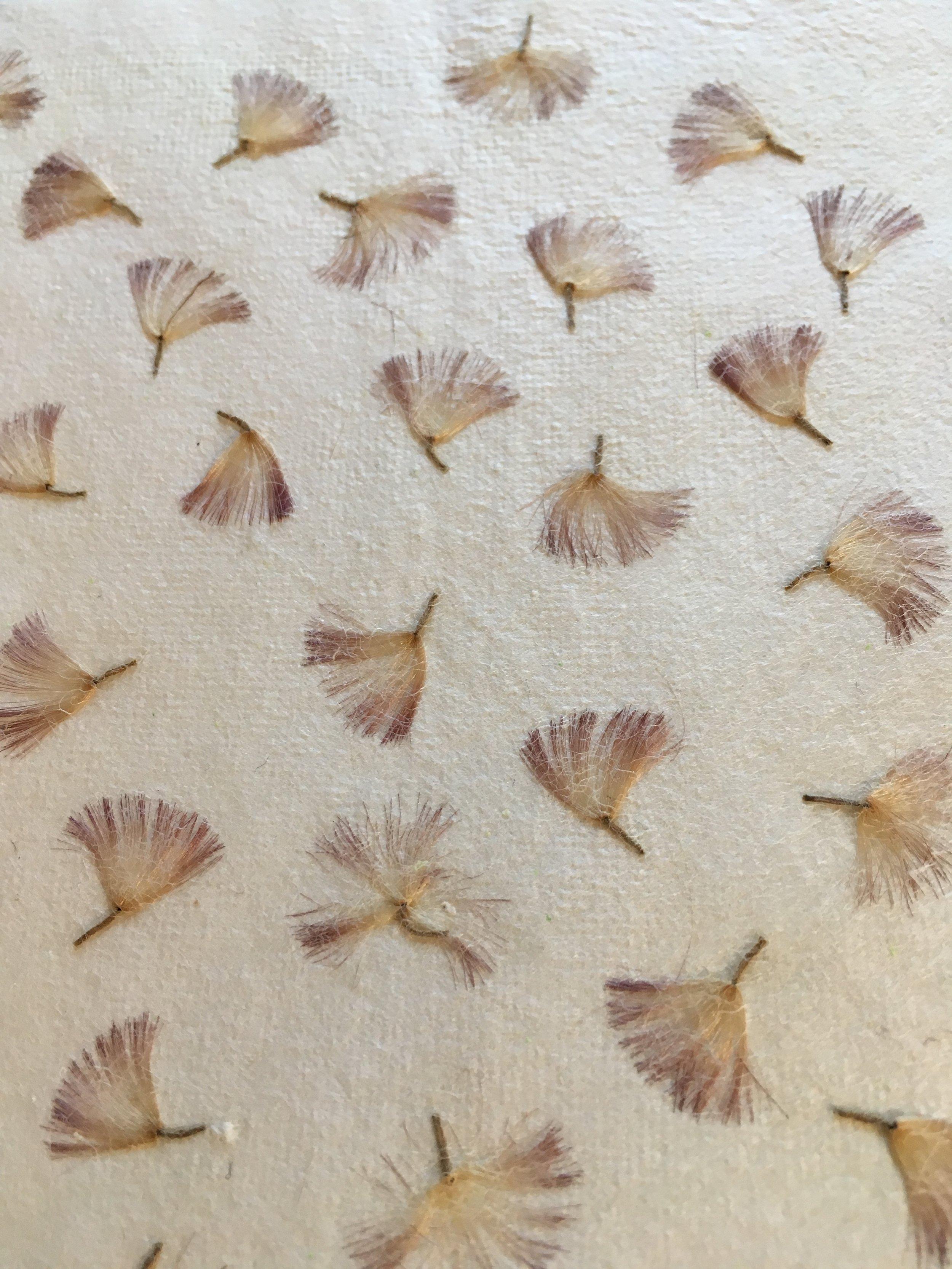 gerbera leaf paper.JPG