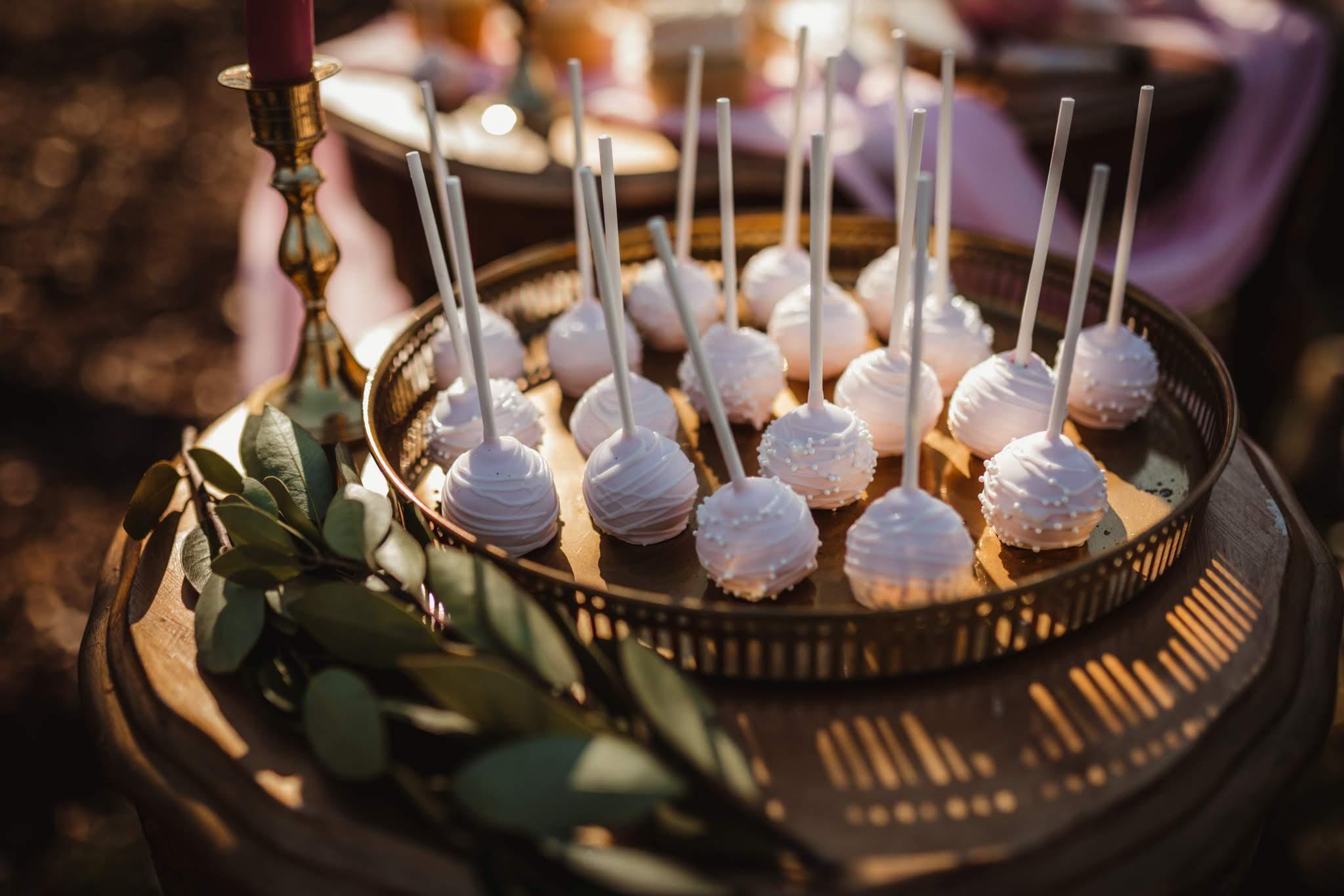 Blush Wedding Cake Pops - Spring Wedding at the UW Madison Arboretum in Madison Wisconsin - Phoenix & Rose Photography