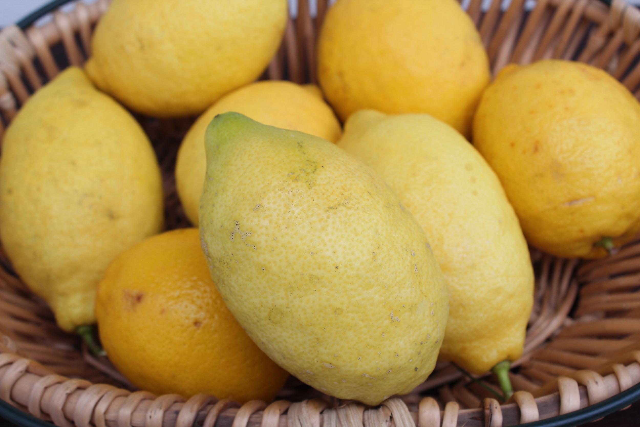 Lemon Curd foto.JPG