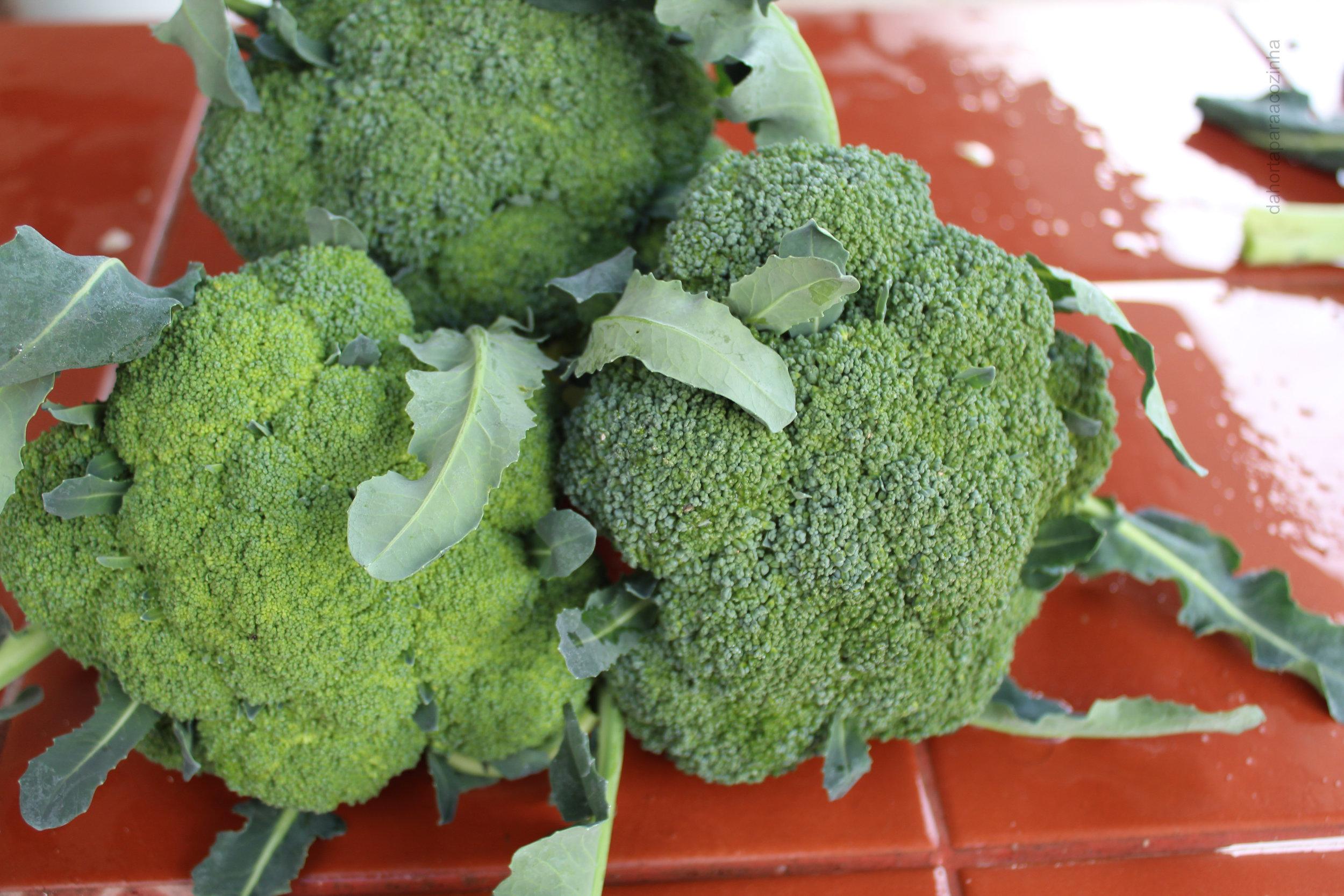 Brócolos.JPG