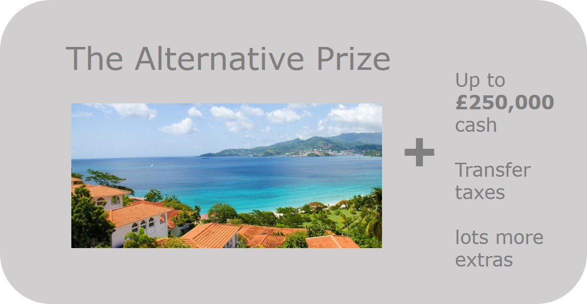 Alternative Prize button grey.jpg