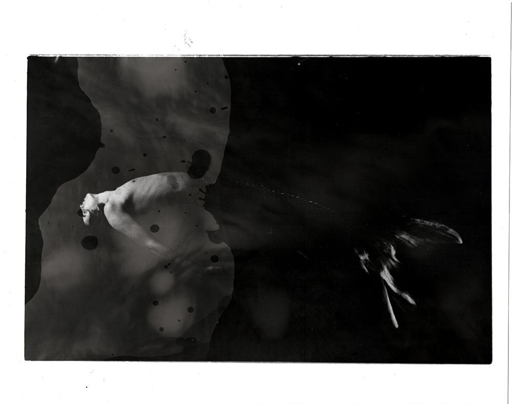 darkroom098  1000 1.jpg