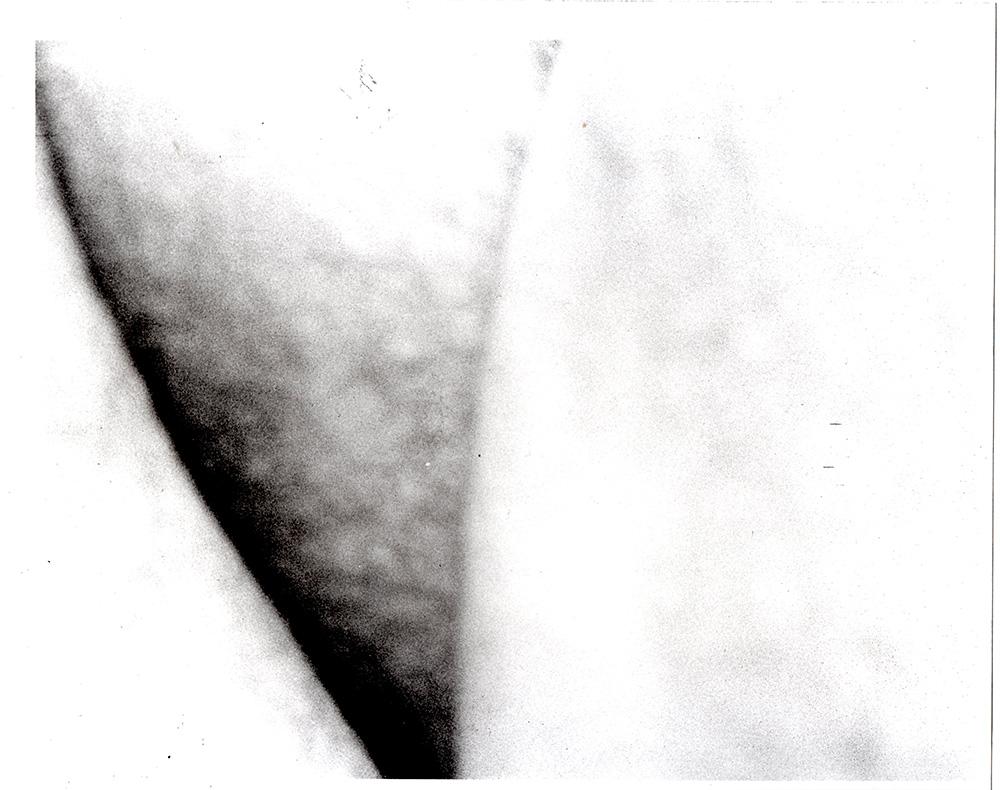 darkroom108  1000 1.jpg