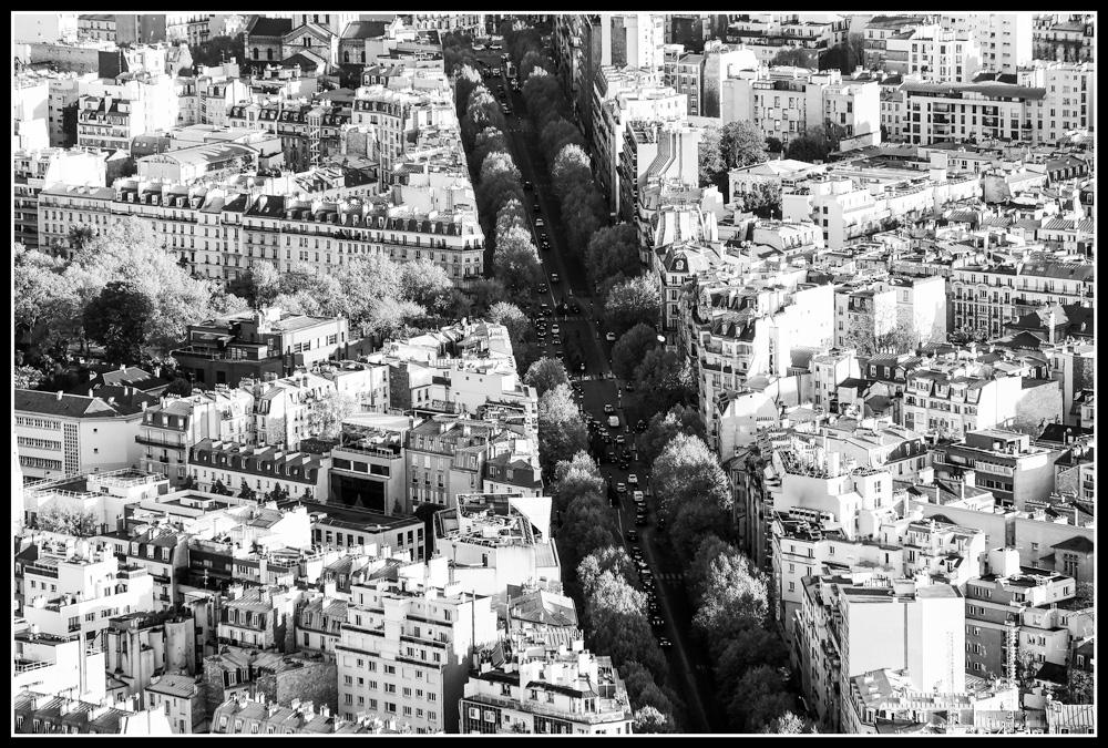 Paris - Boulevard   Fuji XT1 with Fujinon XF 18-135mm © 2017 Miguel Witte