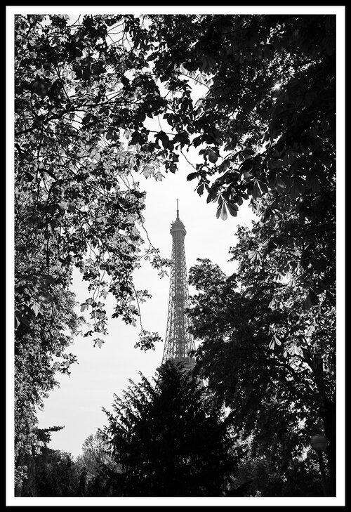 Paris - Eiffel Tower   Fujifilm X100S © 2019 Miguel Witte