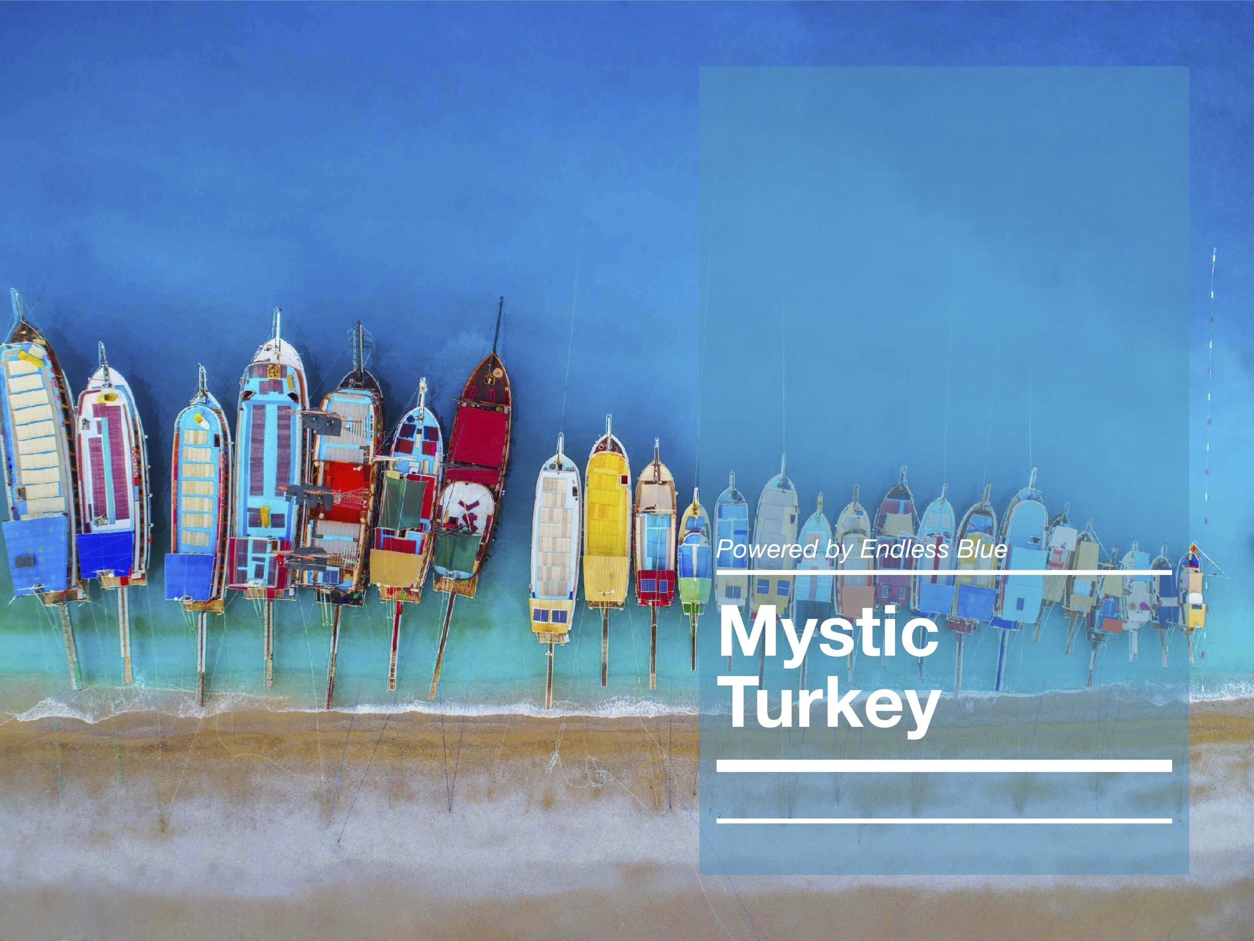 MYSTIC TURKEY COVER SHOT.jpg