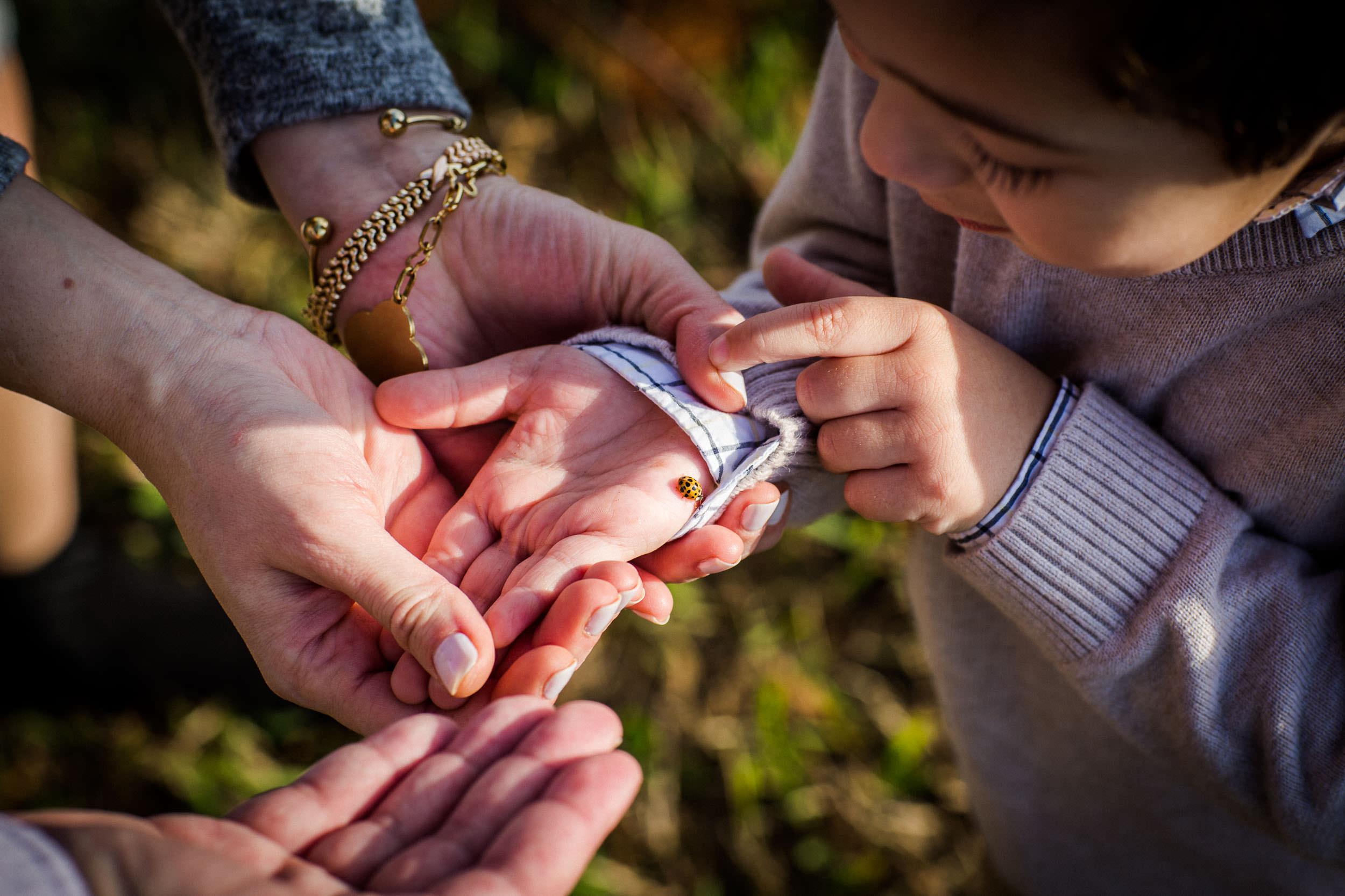 julie-verlinden-family-photography-JV1_4106.jpg