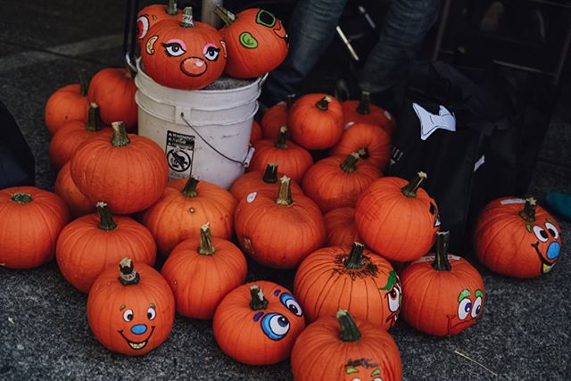 Where the pumpkins are as expressive as the kiddos who decorate them: the 2019 #fauntleroyfallfestival is on Sunday, 10.27!  Photos from our 2018 festival by talented #westseattle resident Danielle Raney Photography
