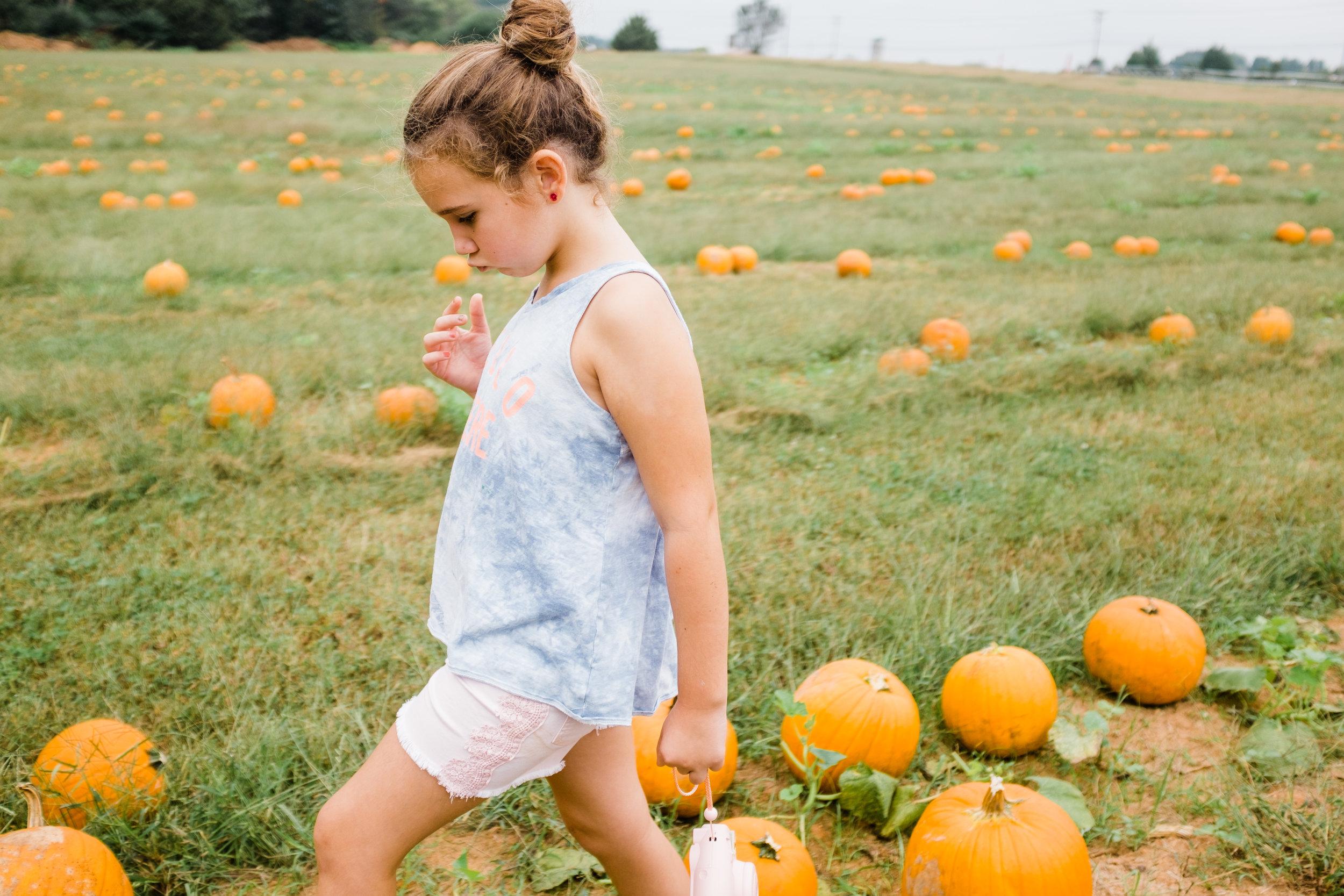 pumpkin-charlotte-2.jpeg