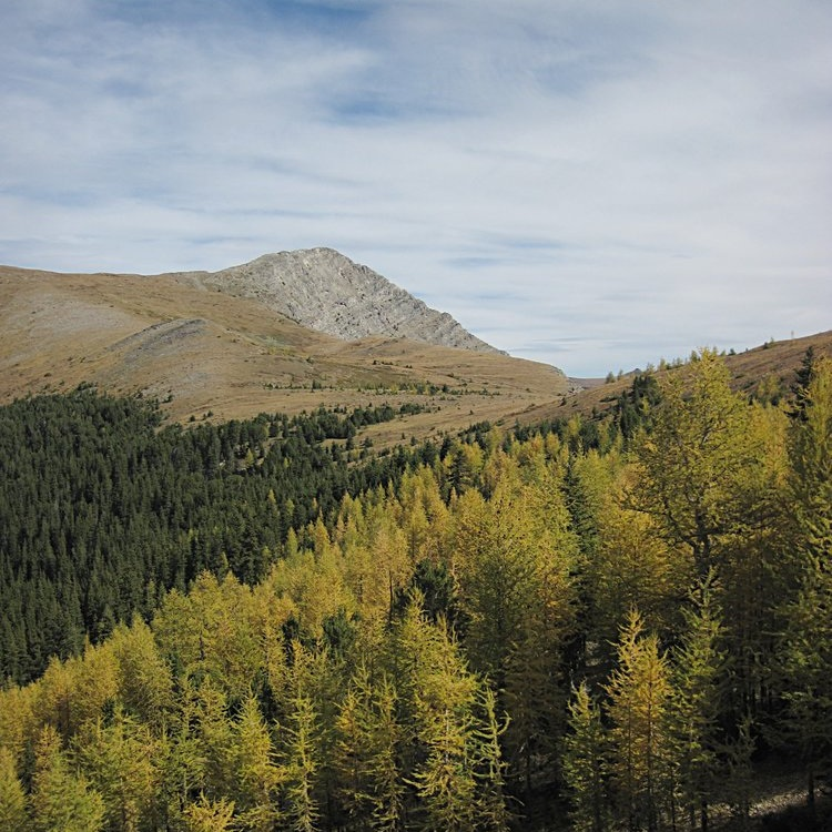 Pintler Mountains, final range the trail moves through.