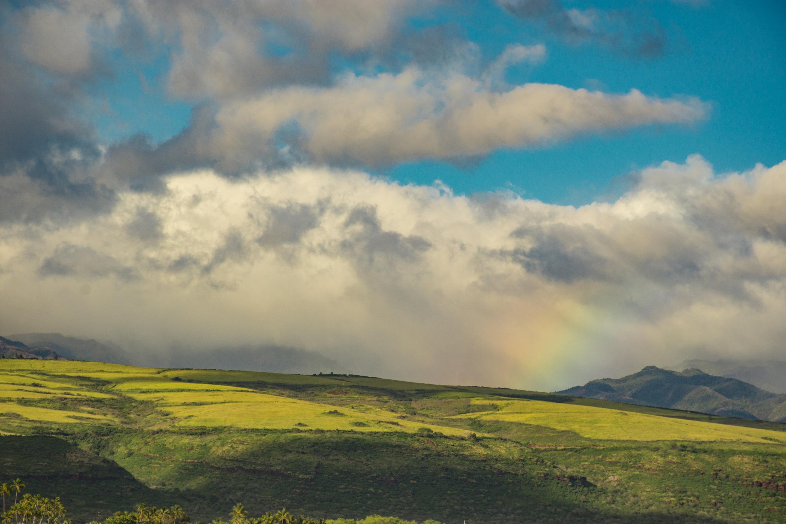Kauai-34.jpg
