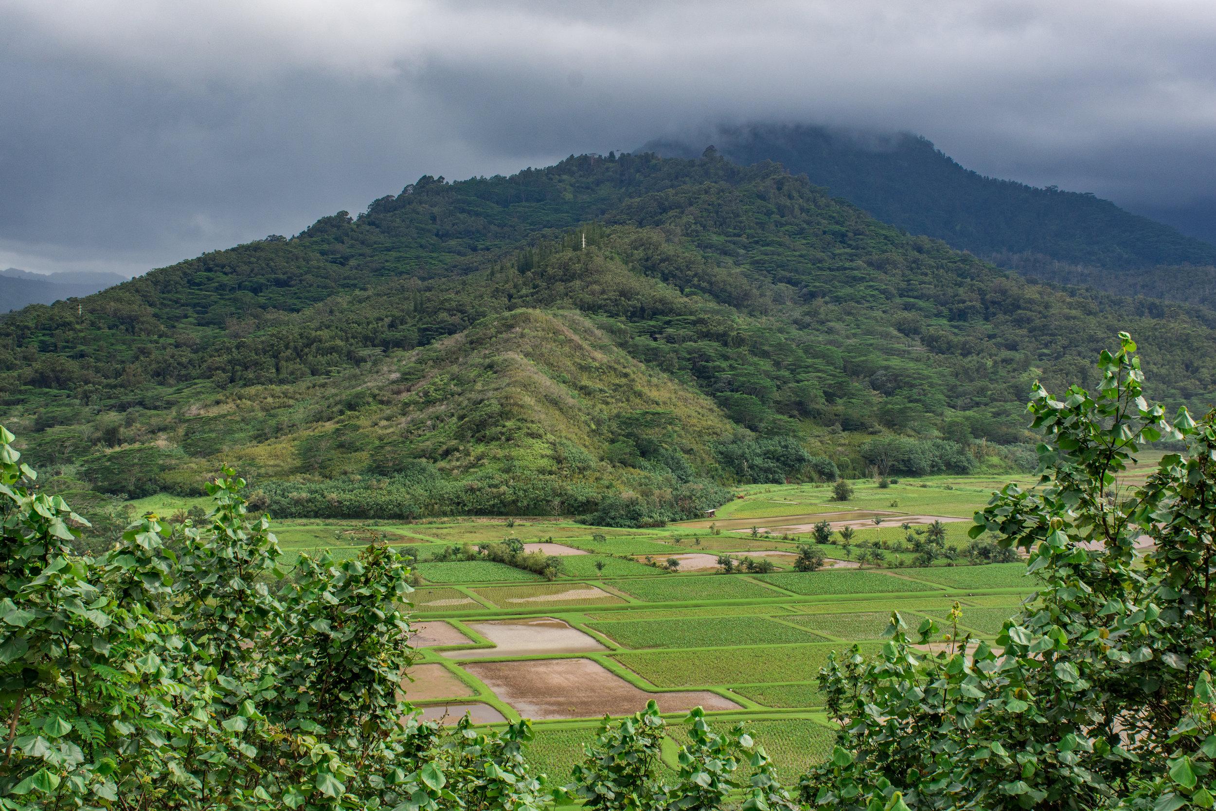 Kauai-51.jpg