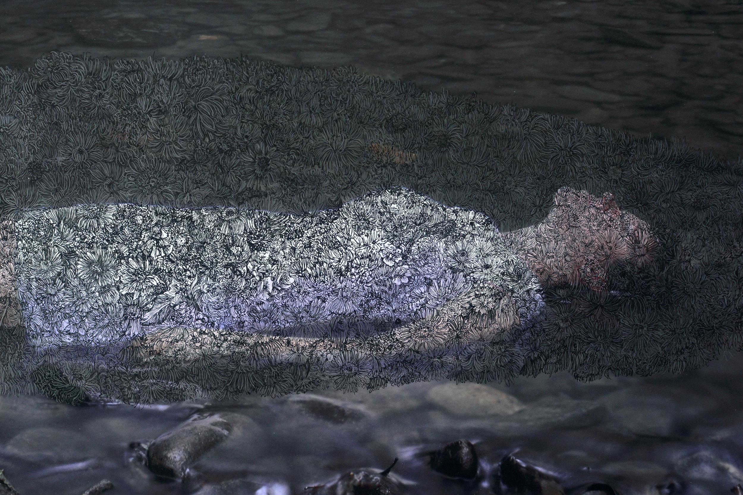 """Burying Myself (detail) Ink on digital print, 2018, 29.5"""" x 45"""""""