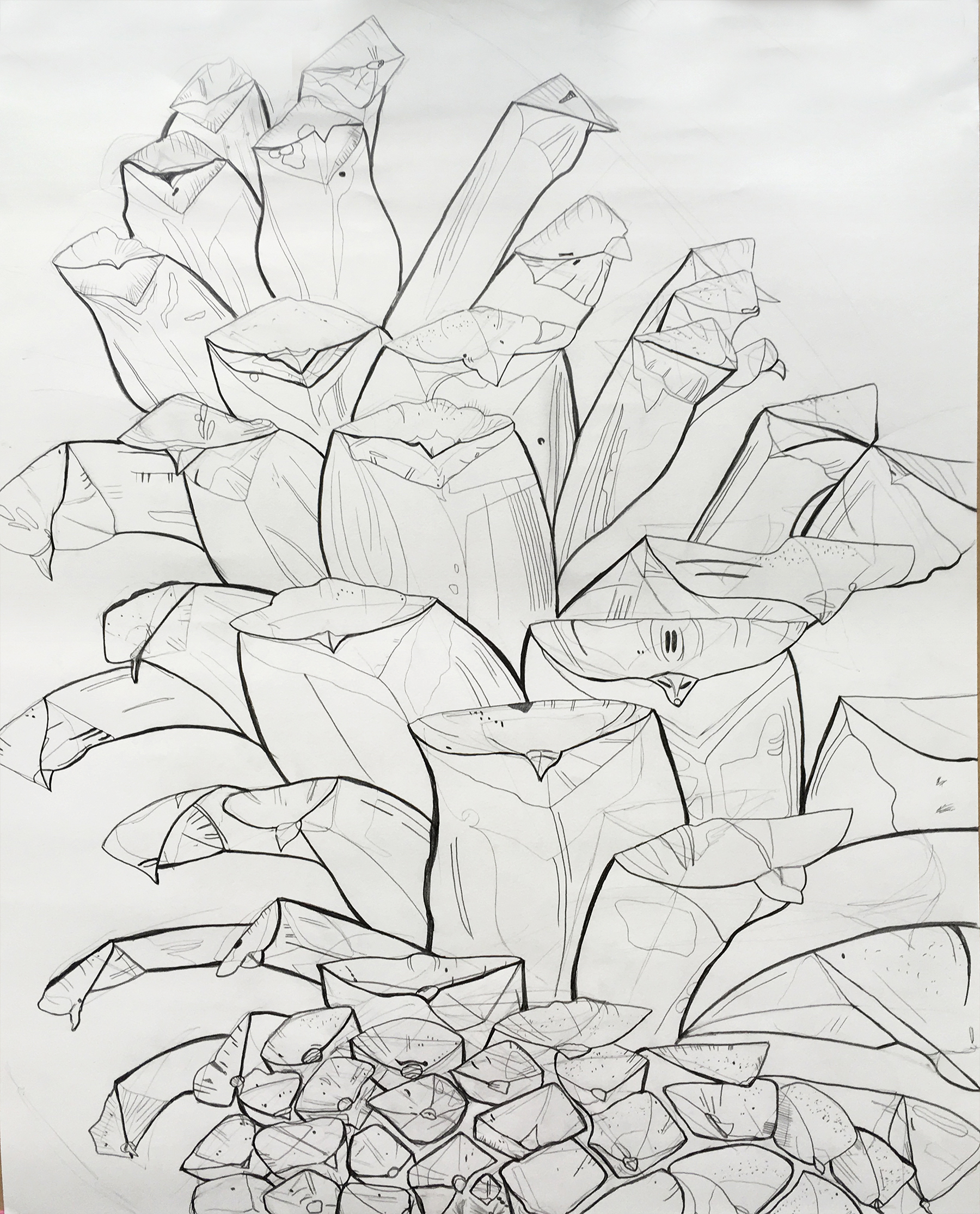 "Drawing 1 - Contour Line Pinecone Drawing, Graphite, 24"" x 18"""