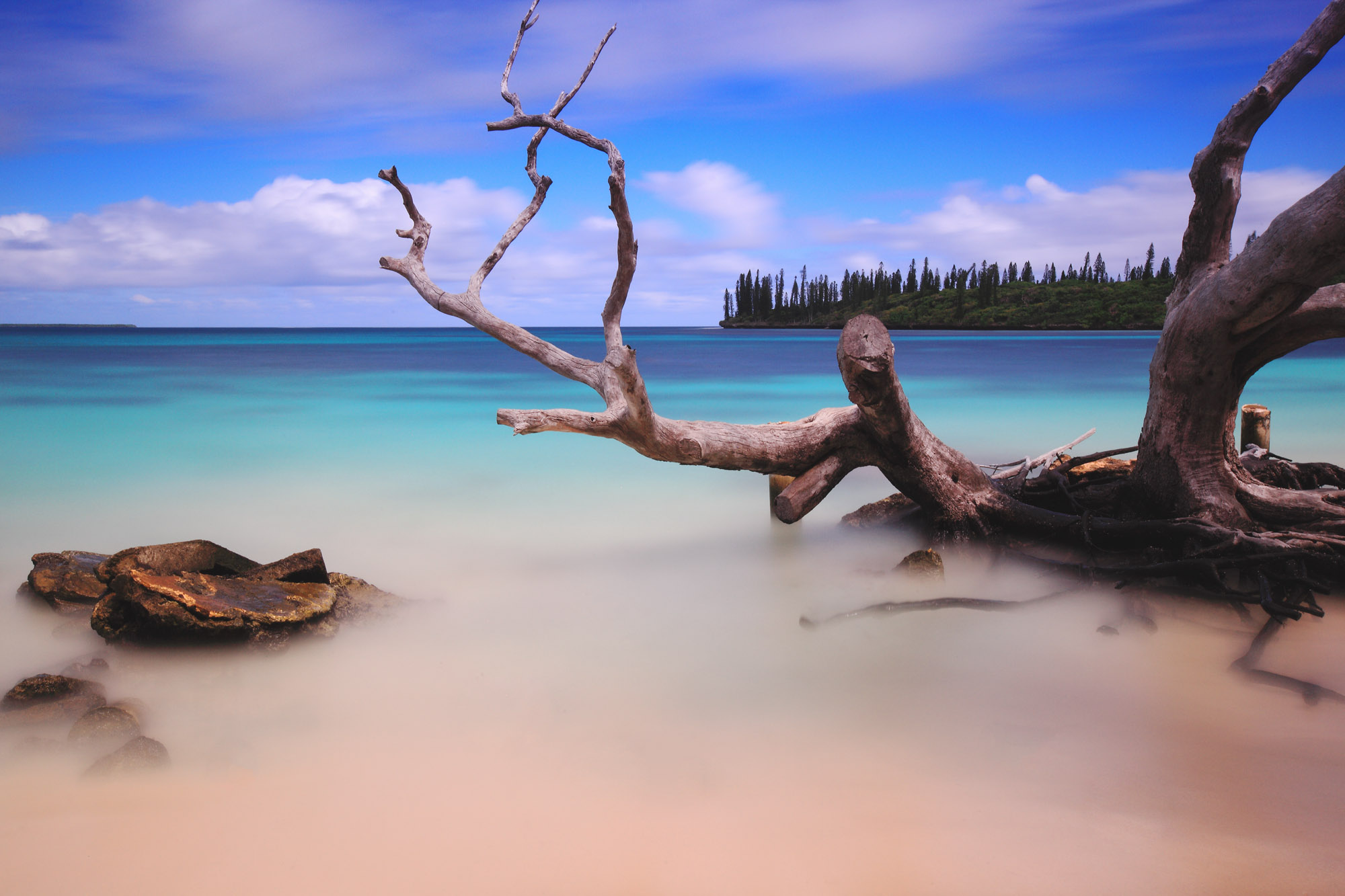 Copyright - George Suresh - isle of Piines .jpg