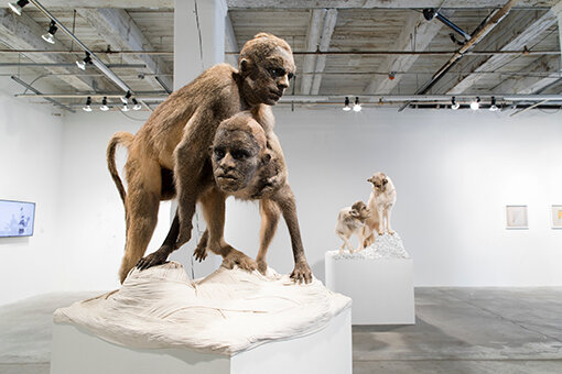 Rivalry  by Kate Clark, 2012, baboon hide, foam, clay, pins, thread, rubber eyes, rope,  ( 82 x 36 x 36 inches) (c) Colin Conces, for Bemis Centre for Contemporary Arts