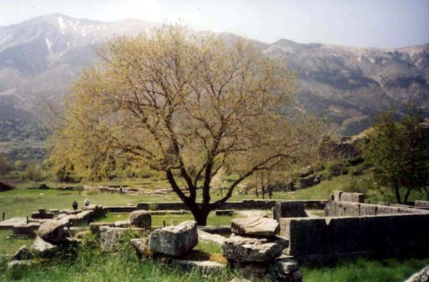 The site of Dodona