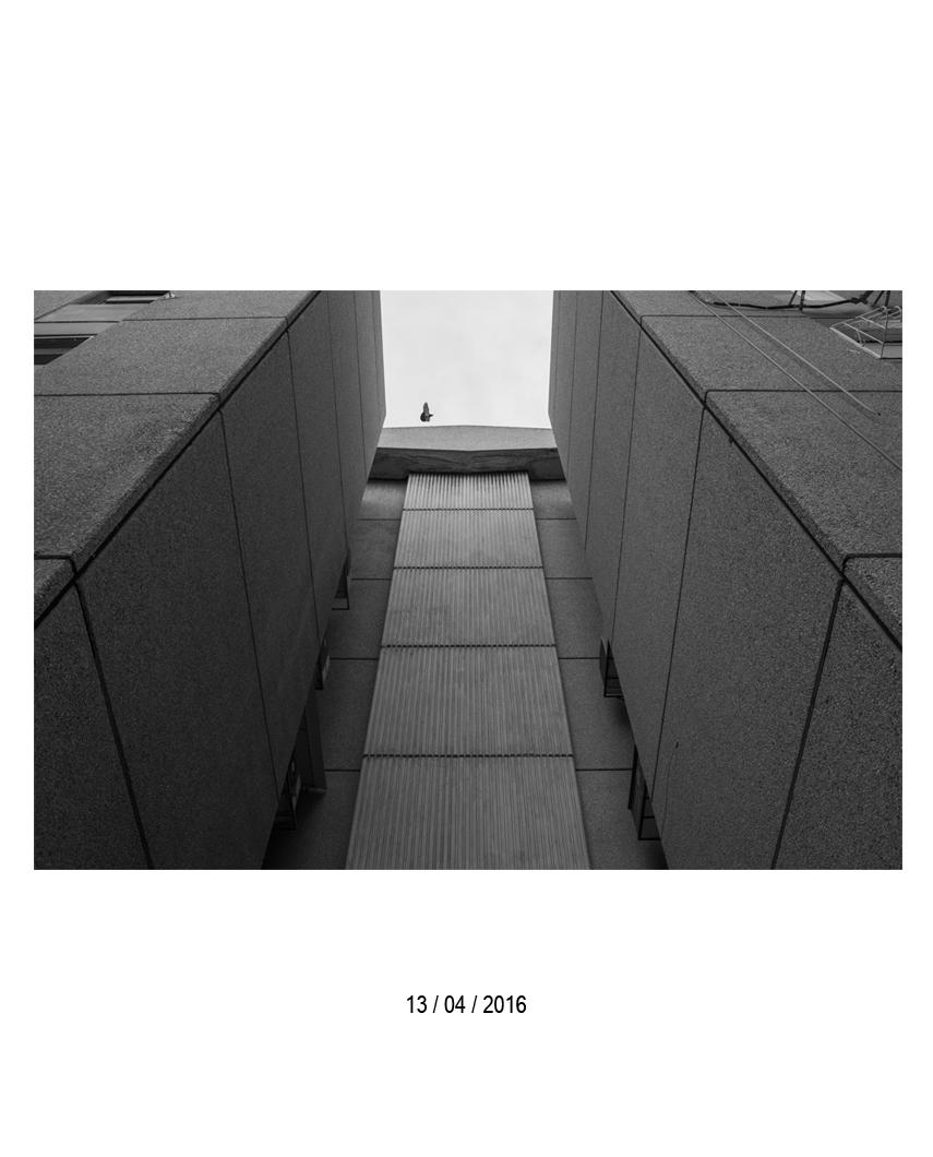 13.04.jpg