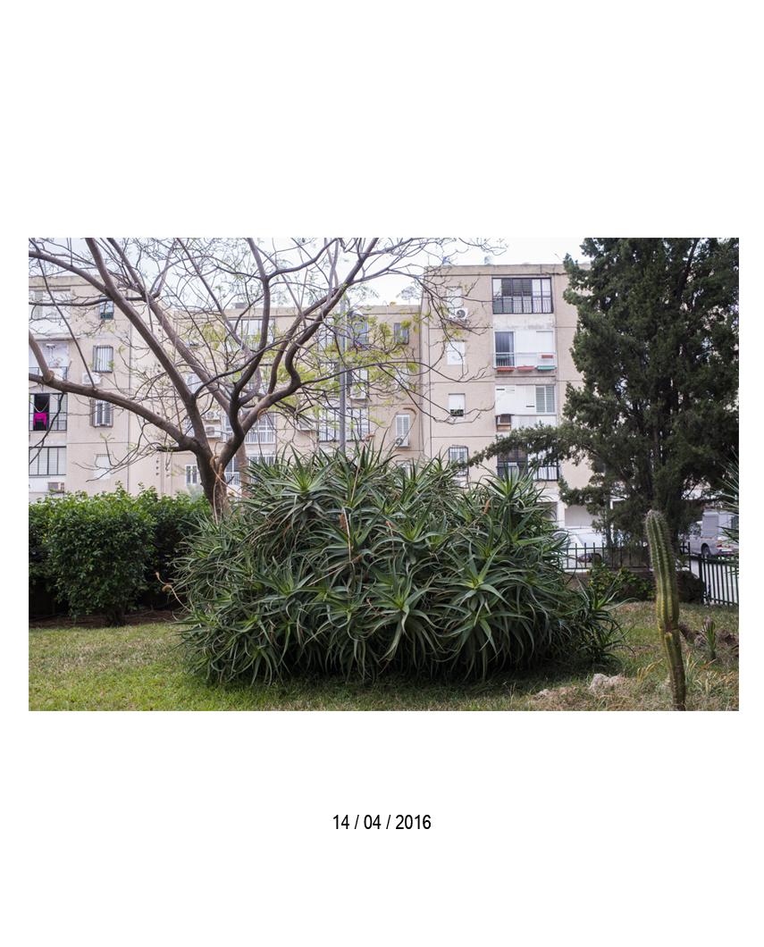 14.04.jpg