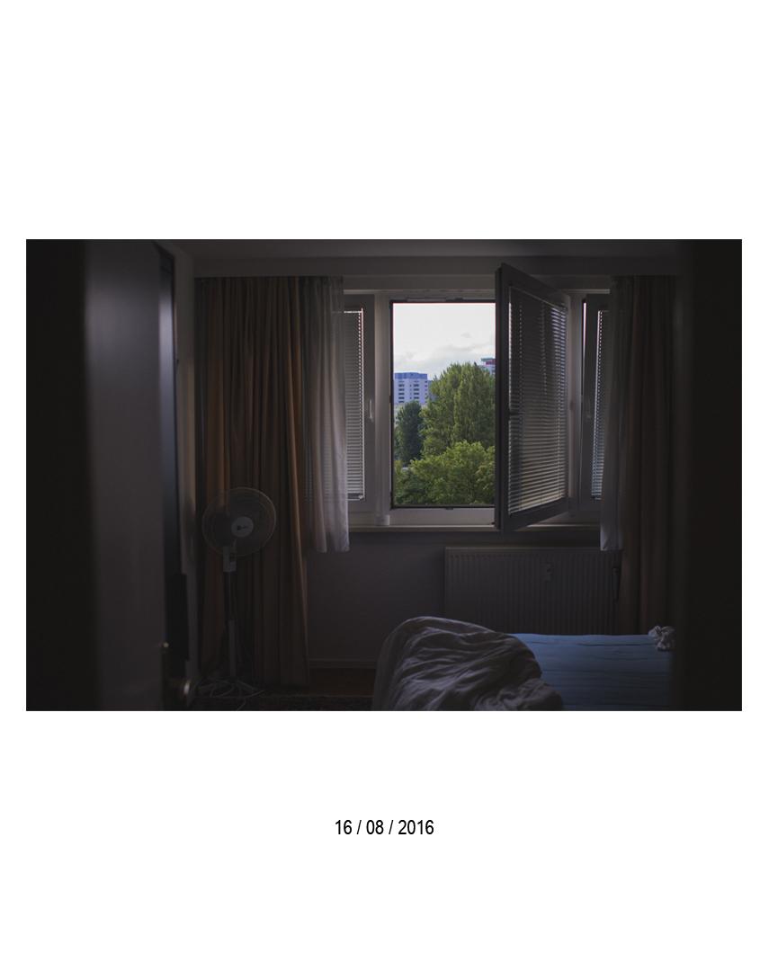 16.08.jpg