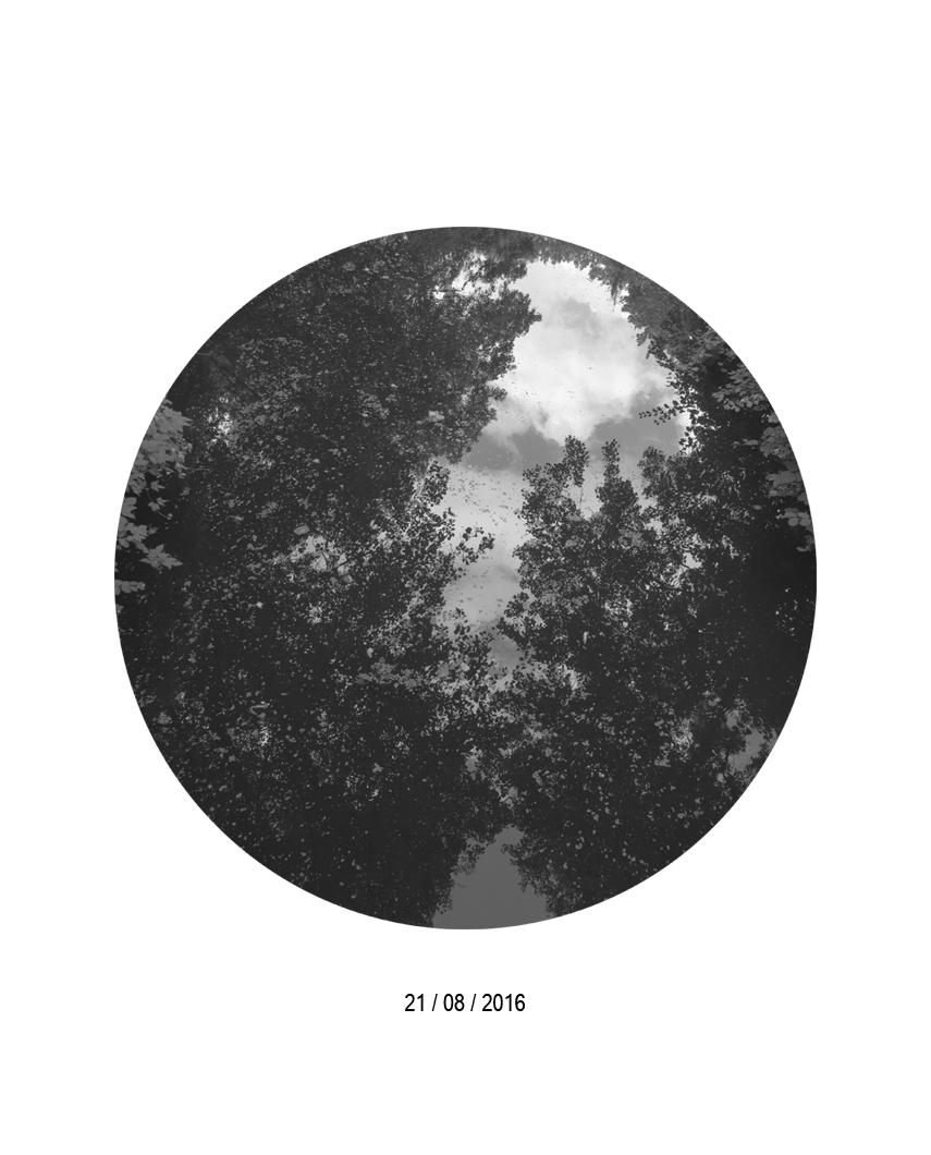21.08.jpg