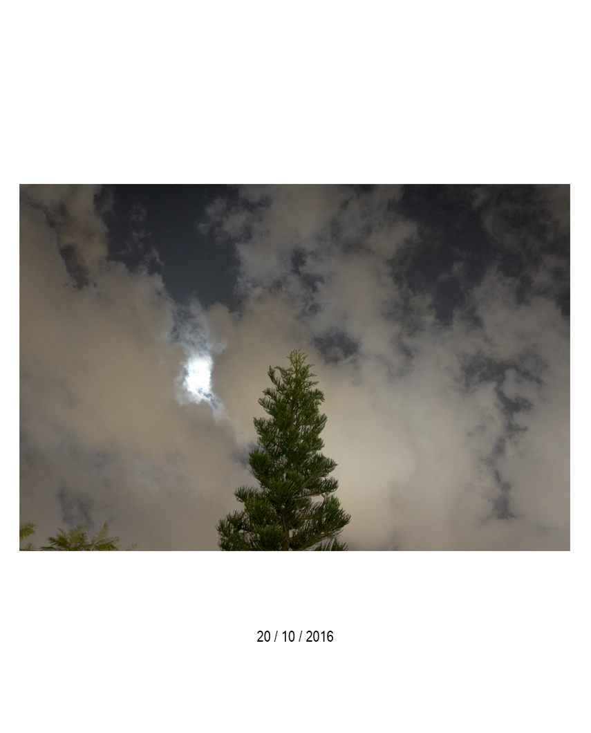 20.10.16.jpg