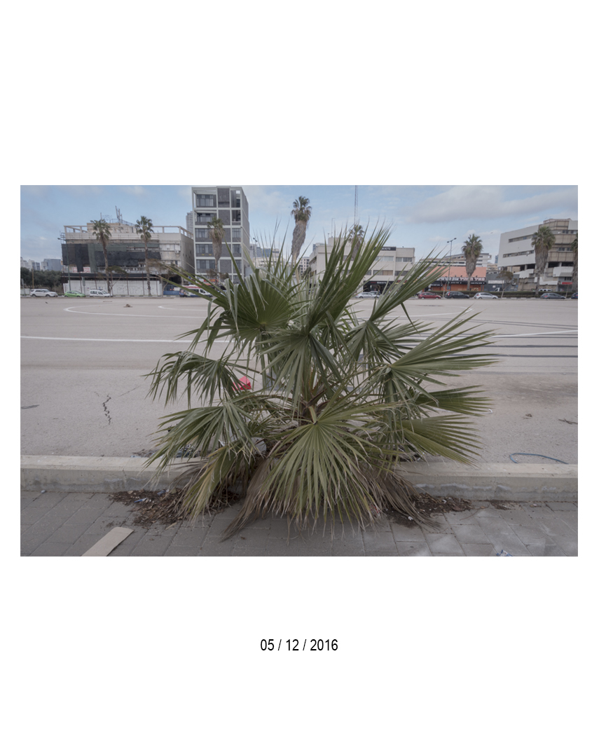 05.12.16.jpg