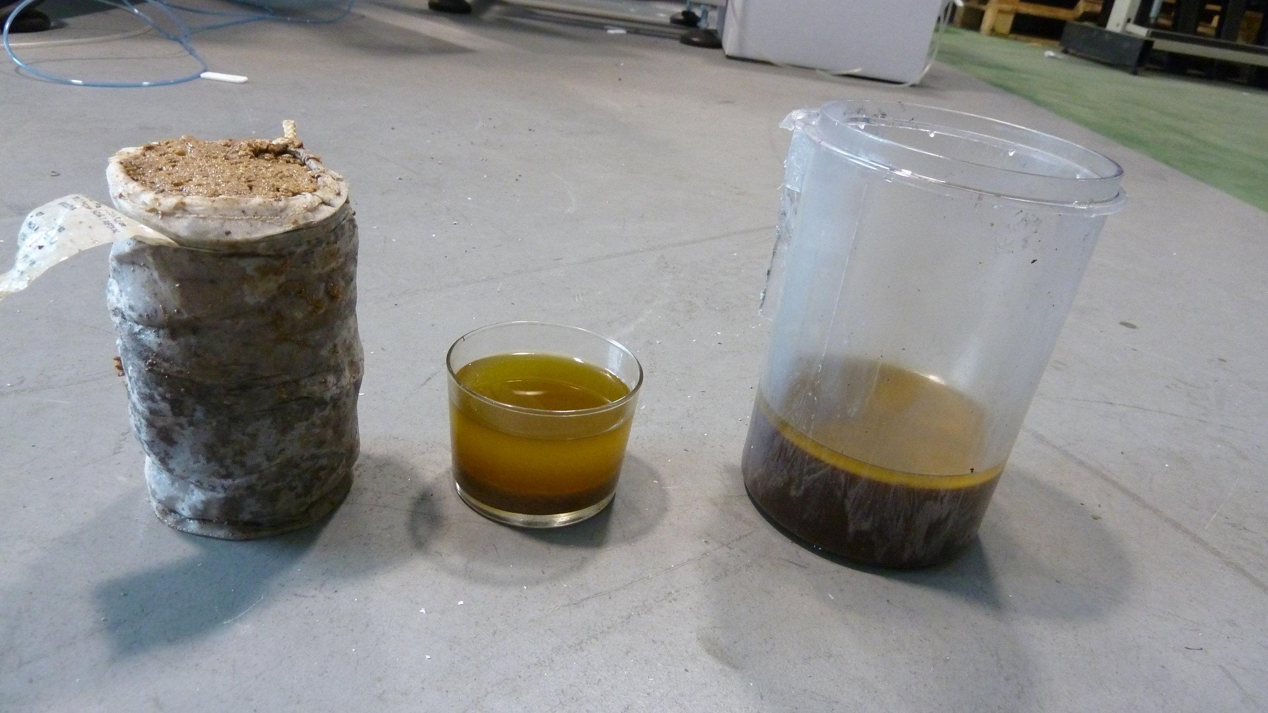 maquina-extracción-aceite-proceso