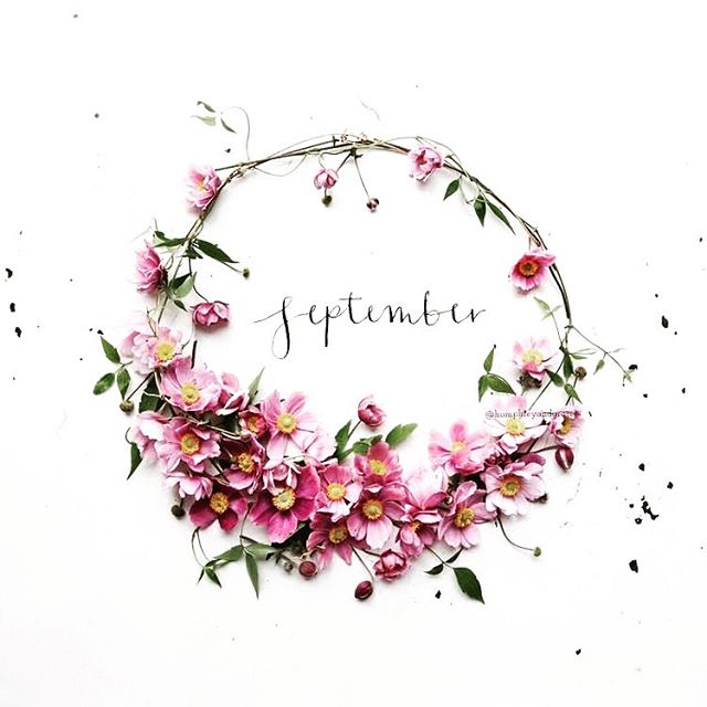. And so it's September.....what?!?!?! . It's a new month, a new season and a fresh start in many ways . Annnnnnnd...it's the Countdown to 🎅 . Have you thought about Christmas yet? Have you built it into your Social Media Strategy? . #september #newmonth #newseason #byefornowsummer #helloautumn #countdowntochristmas #smallbusiness #socialmediastrategy