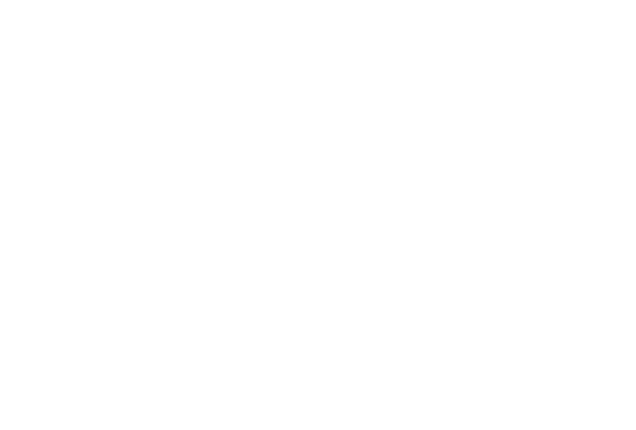 VanWinkle_Logo_Final_Apr18-06.png
