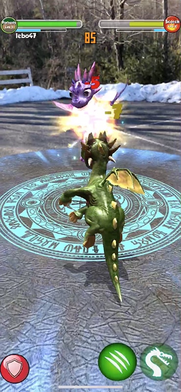dragons02-min.jpg