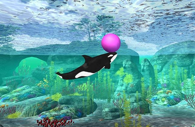 dolphin05-min.jpg