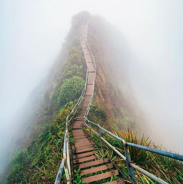 """greenlightcrewjobs    Take your first step towards a cannabis career with Greenlight. . Our newsletter the Weekly Dose can be your first resource to gaining your bearings in the cannabis industry (🔗 in bio) . This beautiful shot was taken at the """"Stairway to Heaven"""" in Honolulu, Hawaii which as of last week, has decriminalized marijuana! Congratulations Hawaii! .  #hawaii  #cannabis  #decriminalize  #instagood  #honolulu  #maui  #canna  #greenlight  #weeklydose  #journey  #career  #recruitment"""