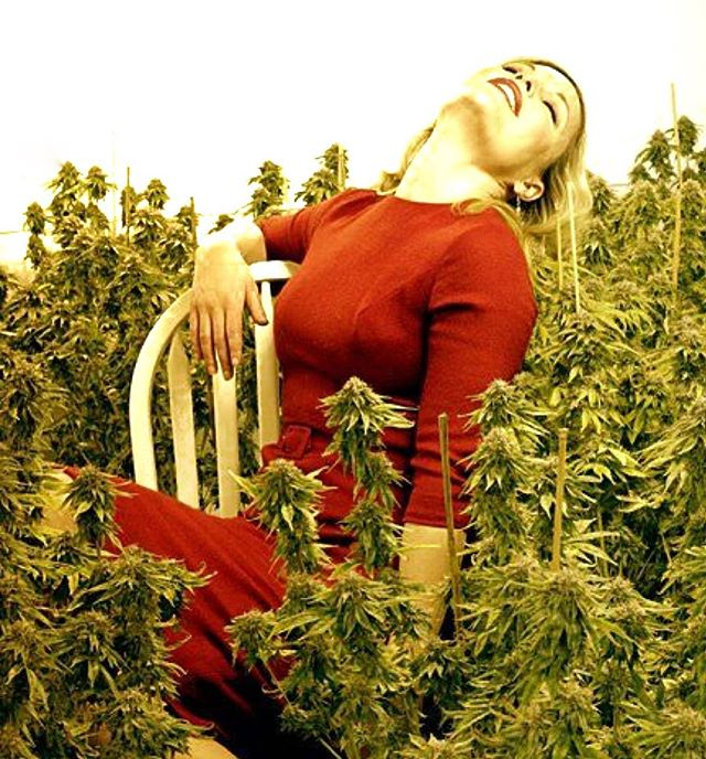 Just one more day till you can... . Inhale the weekend... . Exhale the work week. 🌬 . . . . . . . . . . . . . #weekend #relax #cannabis #decriminalize #instagood #recruiterlife #recruiter #canna #greenlight #weeklydose #journey #career #recruitment #doseit #letgo #happy #green #pot #cannajobs #cannacovered #greendream #greenleaf #bud #budpress #greengate
