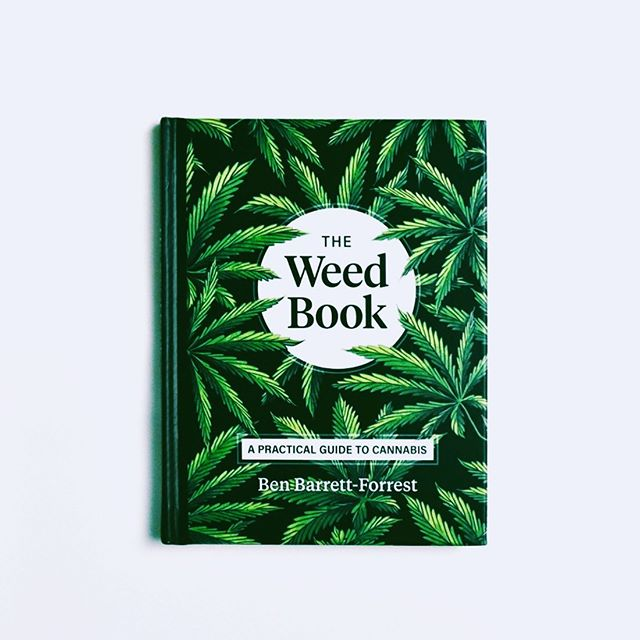 Good Morning Greenlight Folks! . Whose ready for some light weekend reading? 🌿 Material via the @weeddeck ✌🏼✨. . . . . . . . . . . . . . . #tuesday #newsletter #cannabis #decriminalize #instagood #recruiterlife #recruiter #canna #greenlight #weeklydose #journey #career #recruitment #doseit #letgo #happy #green #pot #cannajobs #cannacovered #greendream #greenleaf #bud #budpress #greengate