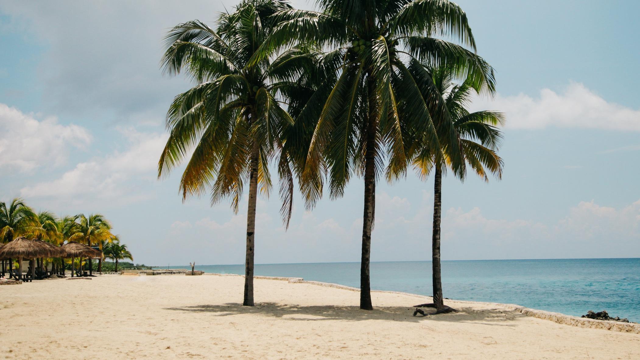 Key West - En utflykt som tar 15 timmar men är väl värd den investerade tiden. På den här upplevelsen får du se otroligt mäktiga Key West via båt, vandra på de pittoreska gatorna, njuta av stranden och besöka Ernest Hemingways lilla vita hus bland mycket annat.