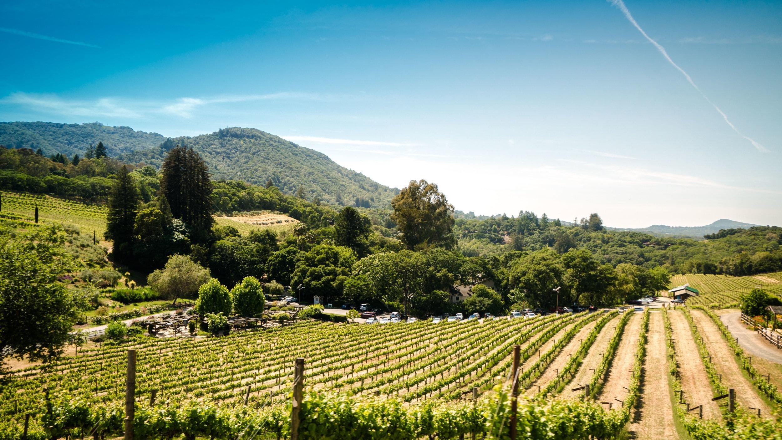 Winetrain - Den här heldagsutflykten uppfyller en vinälskares innersta drömmar. En buss-limousine tar dig med på besök till totalt fyra vingårdar i Napa Valley och Sonoma som avrundas med en fyra timmars middag på Napa Valley Wine Train. Under middagen körs du omkring i spektakulära Napa Valley innan hemfärd till hotellet.