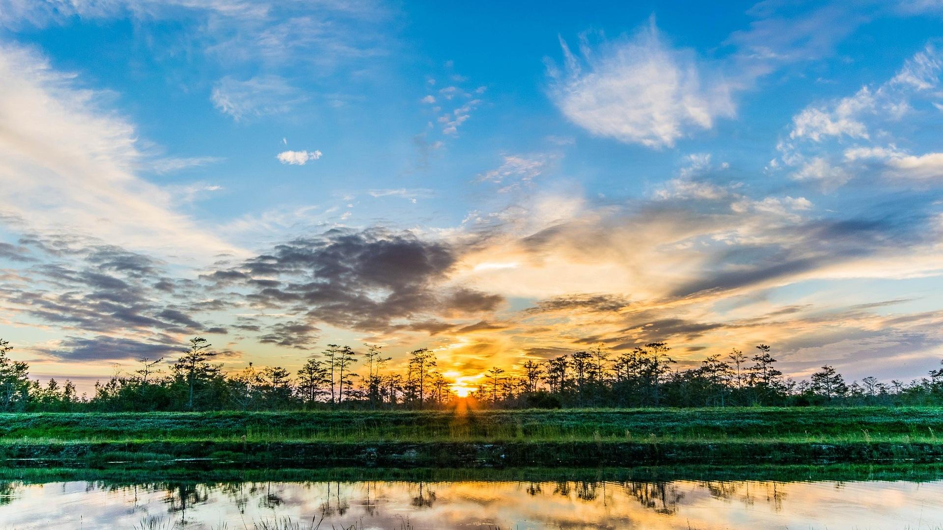Everglades - Endast 30 minuter från Fort Lauderdale ligger en av USA:s största nationalparker - Everglades. Här kan du bland annat åka träskbåt, uppleva reptiler i sin hemmiljö och beskåda en hel del alligatorer. En passande dagsutflykt efter några lata dagar på stranden.
