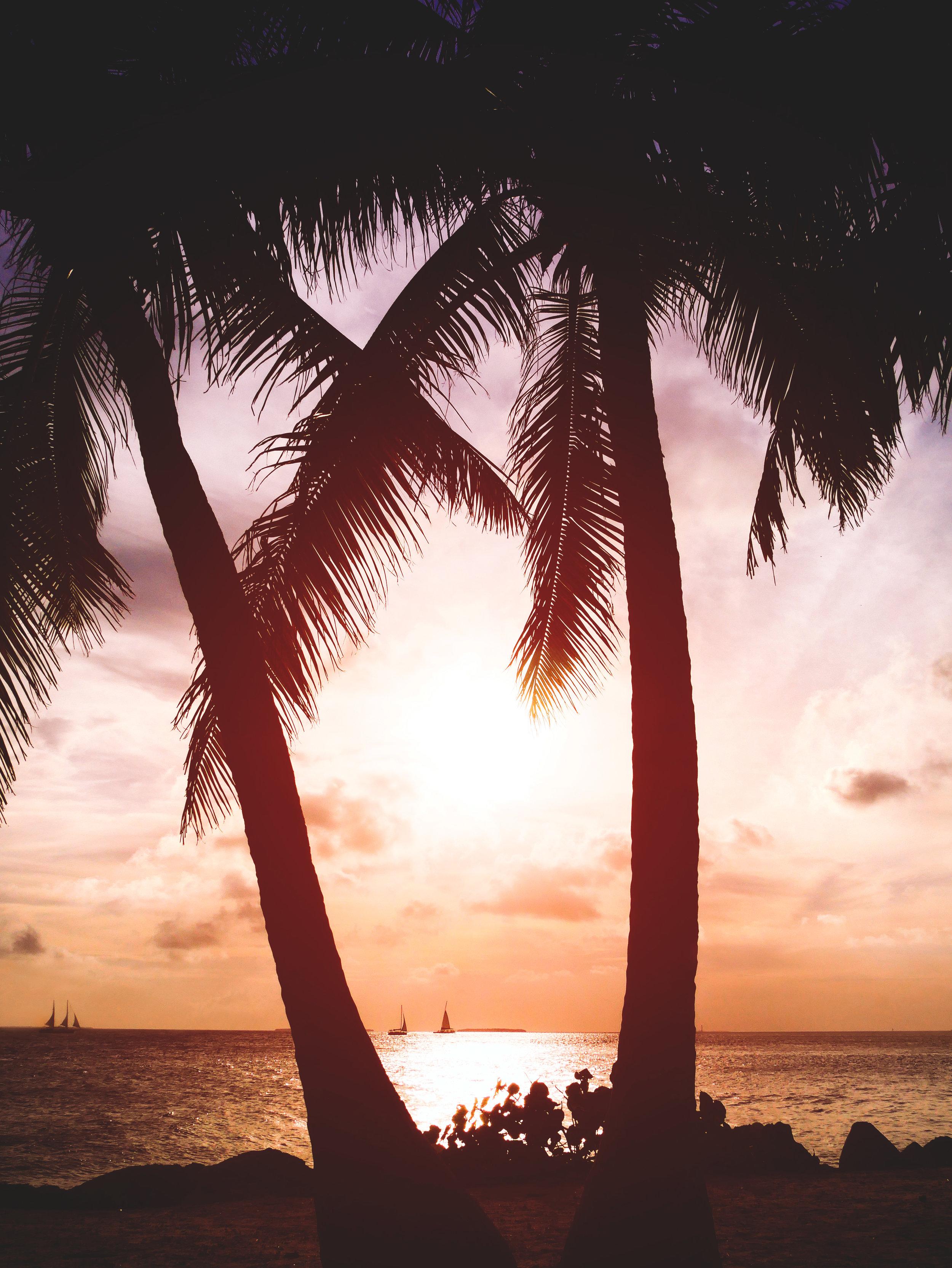 Fort Lauderdale Florida Supreme Travel