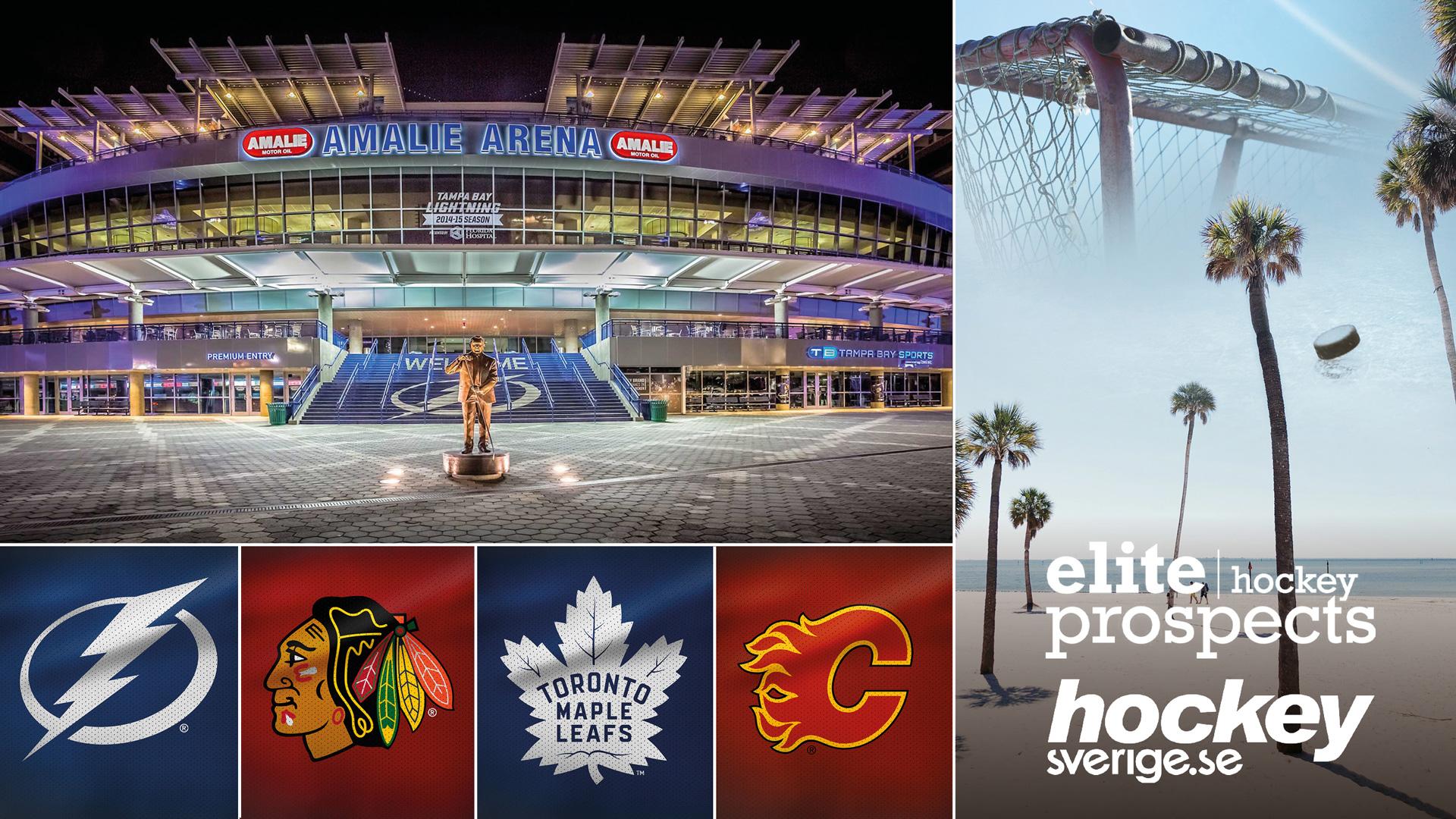 Hockeyresa Tampa med Hockeysverigeoch Elite Prospects - 24 feb - 2 mars 2020 | Vill du uppleva det bästa av två världar - sol och bad på Floridas stränder samt tre NHL-matcher? Tillsammans med Hockeysverige och Elite Prospects erbjuder vi en fantastisk NHL-resa till Tampa där Peter Sibner är färdledare.