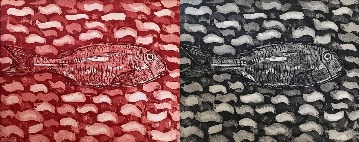Red & Grey Mullet (etching)