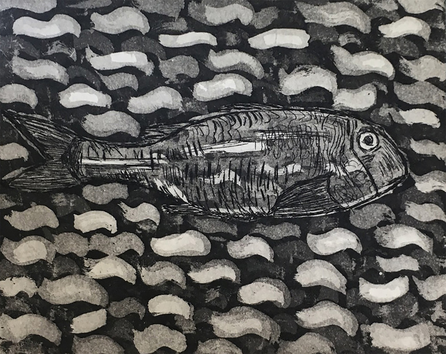 Grey Mullet -  aquatint/drypoint