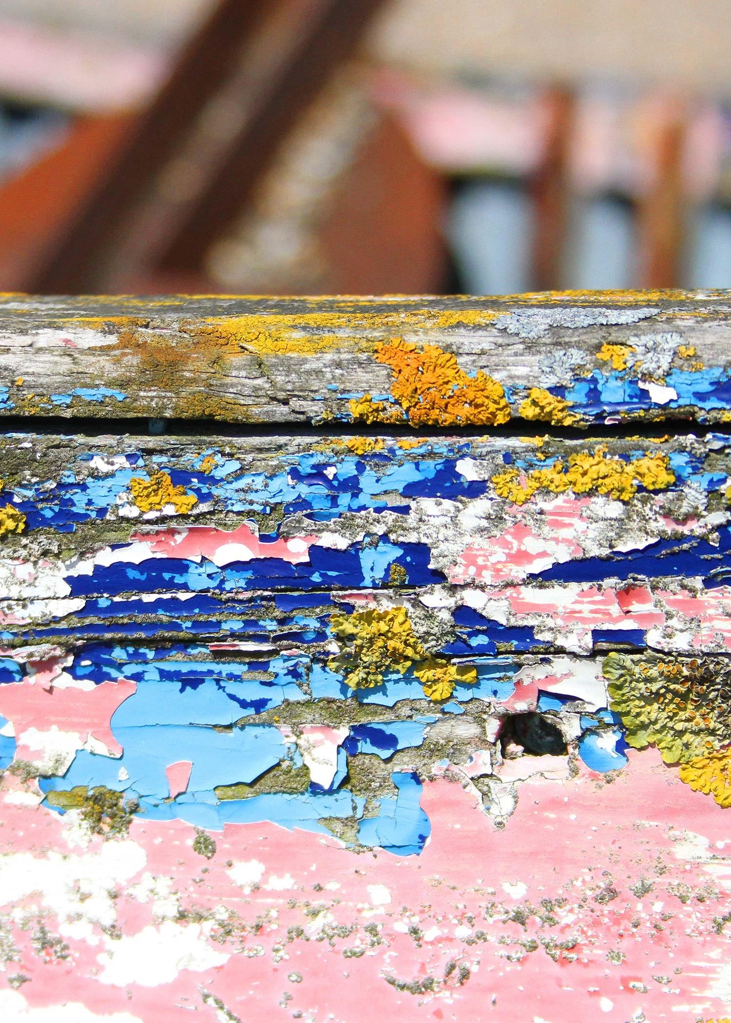pink+and+blue+peeling+boat.jpg